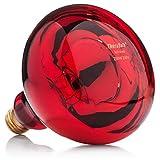 TheraBulb NIR-A Near Infrared Bulb - 250 Watt 240 Volt