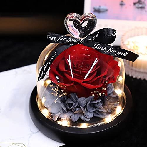 Naturelle Rose Eternelle sous Cloche LED, Fleur Eternelle Véritable Rose Belle et La Bete, Coffret Cadeau Femme avec Carte de Voeux pour Noël Saint-Valentin Fêtes des Mères Mariage Anniversaire Déco
