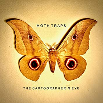 The Cartographer's Eye