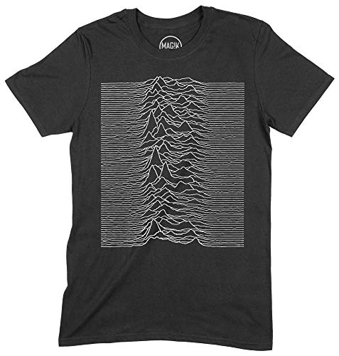 T-Shirt Joy Division Maglietta Uomo Unisex Rock Indie Alternative Cotone, D10377, XL, Nero