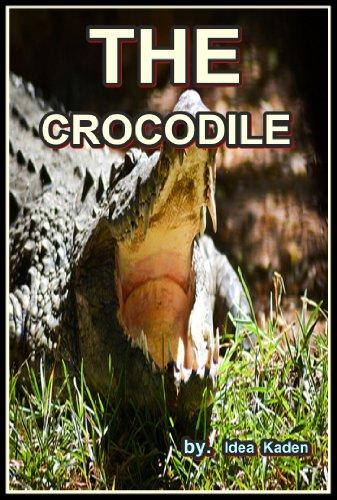 THE Crocodile (English Edition)