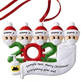 Lastest Upgraded Personalized 2020 Christmas Ornaments, Quarantine Survivor Family Ornament Kit, Christmas Decorating Kits, Creative Gift for Family 1-7, Name Christmas Ornament