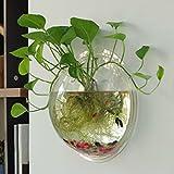 Tinksky Wand Fish Tank Wand hängenden Clear Glas Vase Blume