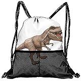 Drawstring Bundle Bags Gym Fitness Backpacks for Men Women Boys Girls Sports Hiking Cycling Camping, Dinosaur Animal Portrait Set,16.5