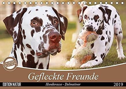 Gefleckte Freunde - Hunderasse Dalmatiner (Tischkalender 2019 DIN A5 quer): Dalmatiner gehören zu den auffälligsten Hunderassen, ihre Flecken machen ... (Monatskalender, 14 Seiten ) (CALVENDO Tiere)