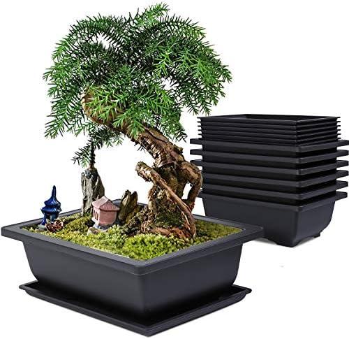 Baarrtt Bonsai Training Pots 6 Pack 9 inches Large Planters Plastic Rectangle Bonsai Plants product image