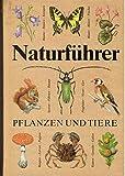 Naturführer Pflanzen und Tiere