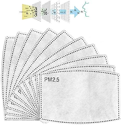 50 STK Pm2,5 Filter Aktivkohlefilter 5-lagig pm 2.5 Filter   Kohlefilter Ersatzfilter Filtereinsatz Einlage Austauschfilter Filterpapier