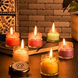 Best Scented Candles - DecDoor Wax Mini Jar Scented Candles, Pack of Review