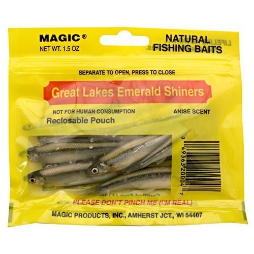 Magic Products Preserved Emerald Shiners Large 5204 (3\