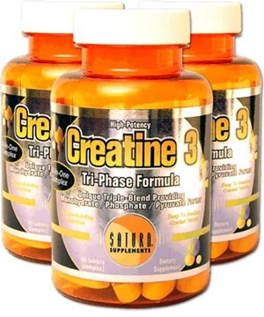 矛盾する最適過半数New.Creatine3/C_Monohydrate, C_Phosphate & C_Pyruvate/60Tabs【アメリカメーカーから海外直送品】 New クレアチン 3 (スリー)60錠