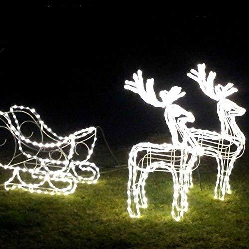 Salone Negozio Online Decorazioni Natale Renna con Slitta 3D Set Completo LED Bianco Caldo