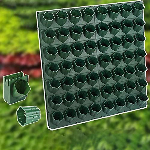 Vertikaler Garten-Wandpflanzer, Vertikaler Garten im Innenbereich, Verwendung im Innenbereich, Hält eine Vielzahl von Pflanzen Für die Gartendekoration im Innenhof