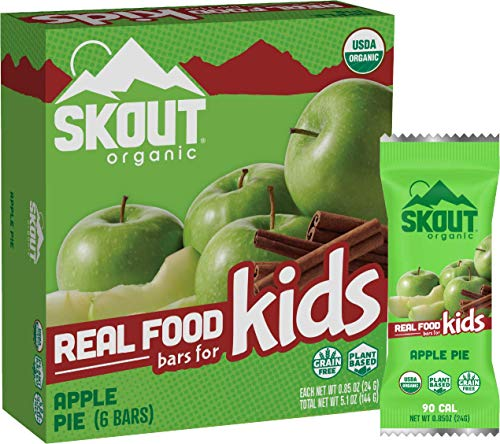 Skout Organic Apple Pie Real Food Bars for Kids (6 Pack) | Organic Snacks for Kids | School Snacks & Lunch Snacks | No Refined Sugar | Vegan & Paleo | Gluten, Dairy, Grain, Peanut, Tree Nut & Soy Free