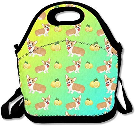 ZMvise Flower Dog Pug Animal Lover Sac Repas Isotherme r/éutilisable Picnic Lunch Sacs Bo/îtes pour Homme Femme Adultes Enfants Toddler infirmi/ères