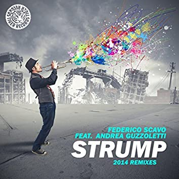 Strump 2014