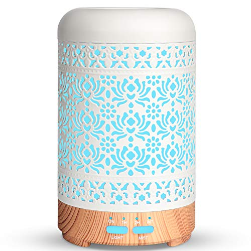 Best Humidifier With Oils
