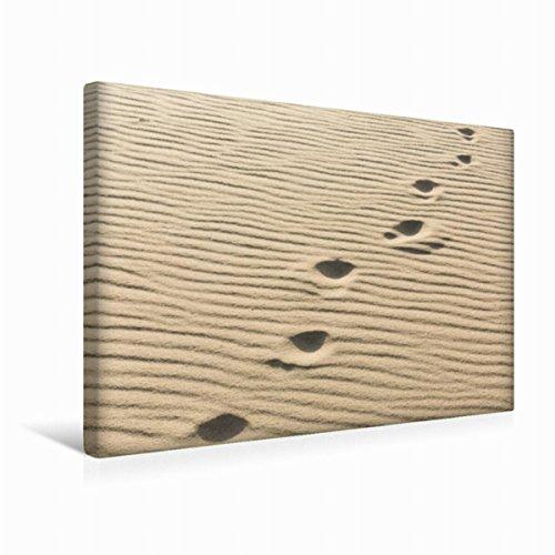 CALVENDO Premium Textil-Leinwand 45 cm x 30 cm quer, EIN Motiv aus dem Kalender Sylt - Magische Momente   Wandbild, Bild auf Keilrahmen, Fertigbild auf echter Fußspuren im Sand Natur Natur