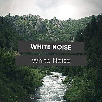# 1 Album: White Noise White Noise