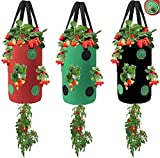Upside Down Tomato Planters, EID 3 Pack Hanging Strawberry Planters with 13 Holes, 3 Gallon Breathable Grow Bags for Carrot Onion Potato Roses