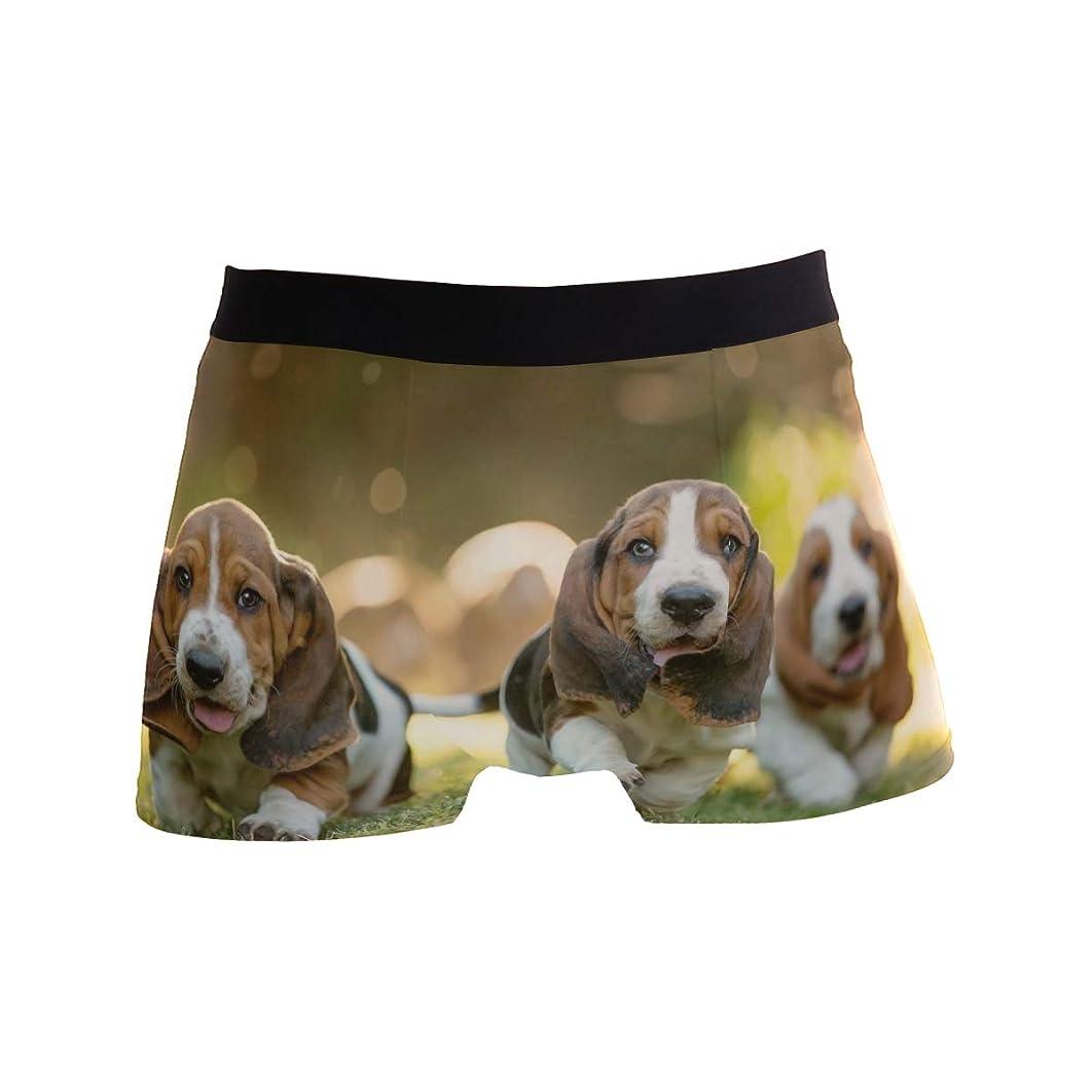 SLAFD Basset Hounds Puppies Men's Boxer Briefs Regular Soft Breathable Comfortable Underwear