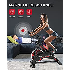 FaaFuu Exercise Bike,Indoor Stationary Cycling Bicycle with Magnetic Resistance, Heart Rate,Adjustable Seat,Tablet Holder and LCD Monitor,Silent Belt Drive, Flywheel Smooth Quiet