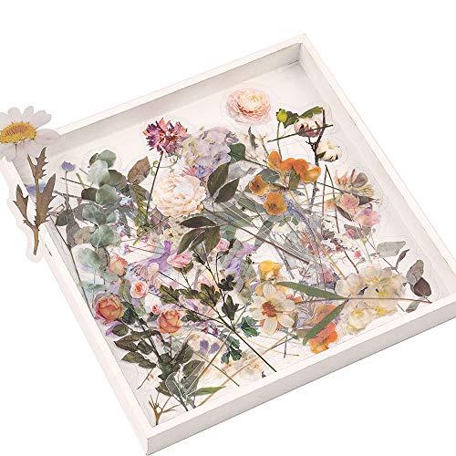 Pflanzen Blumen Sticker Set, NogaMoga 60 Stück Groß Größe Aufkleber, Natur Dekoration PVC Scrapbooking Aufkleber für DIY Fotoalben, Notizbuch, Briefumschläge oder Glückwunschkarten