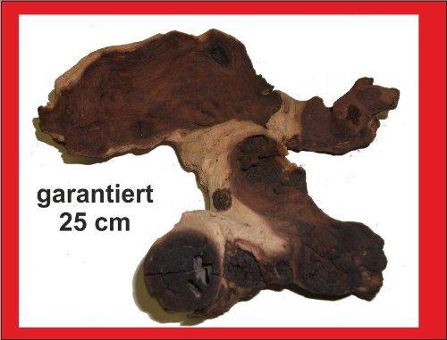 Mopani-Wurzel fürs Aquarium