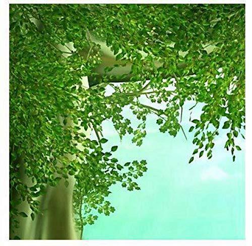 Fototapete Tapete Leinwand Wandverkleidung Kleber Art Deco Muster 3D Rasen Tv Hintergrundbild,500cmx350cm