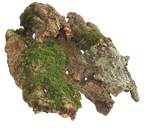 Namiba Terra 0438 Corcho Ornamental, Piezas Planas con Musgo o Trenzas Cubiertas, Aprox. 30-40 cm.