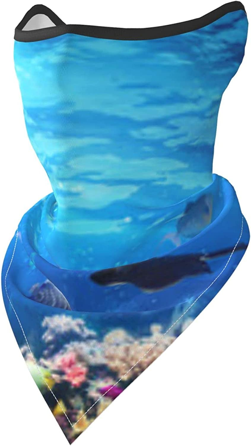 Underwater Scene With Coral Reef And Fishes Turtle Breathable Bandana Face Mask Neck Gaiter Windproof Sports Mask Scarf Headwear for Men Women Outdoor Hiking Cycling Running Motorcycling
