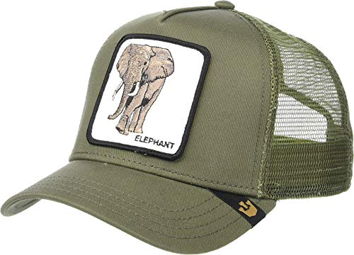 Goorin Bros. | Gorra de béisbol Elefante Verde | GOB_101-0334-OLI