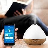 Diffusore di aromi WiFi intelligente, umidificatore di controllo APP con timer LED per dormire meglio e respirare(Unione Europea)