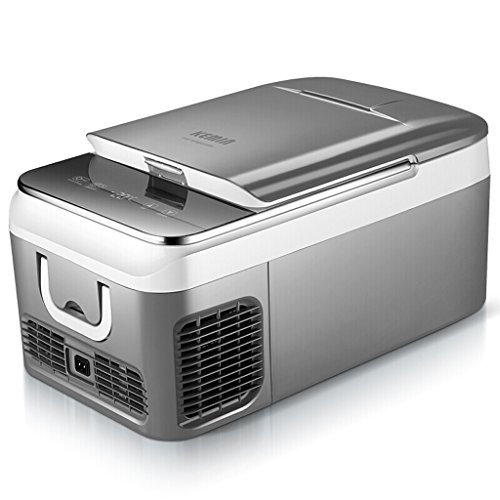 Portable Car Compressor Fridge Freezer, 12 V/24 V - Grey (Size : 18L)