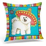 Barbichon Fiesta Cinco Mayo Frise Tenerife Dog Custom Pillowcase