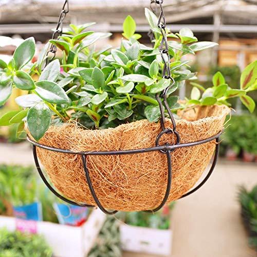 wisedwell Kokoseinlage für Hängeampel Blumenampel 30 cm 35 cm 45 cm 50 cm Runden kokoseinlagen für Pflanzen Faltbares Einstellbares Natürliches Faltbares Einstellbares Faser Ersatzliner