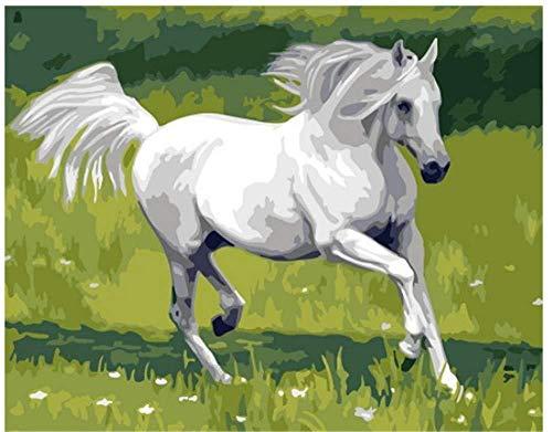 PaintXYZ Laufendes weißes Pferd - Malen nach Zahlen DIY Freunde Erwachsene Kinder Spielzeug mit Bürsten 40X50CM-No Frame