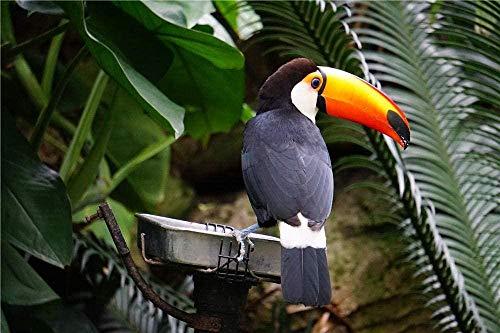 Zwart-Witte Vogel Op Grijze Betonnen Vogel Hobby Woondecoratie Diy Legpuzzel - 1000 Stukjes-
