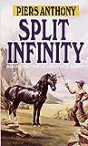 Split Infinity (The...image