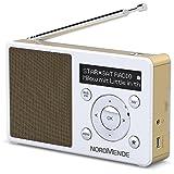Nordmende Transita 100 tragbares und empfangsstarkes DAB Radio (DAB+, UKW, FM,...