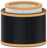 Leitz Trusens Recambio de Filtro 3 en 1 HEPA para Eliminación de Malos Olores, COV-s y Sustancias Contaminantes del Aire, Filtro de Carbón para Purificadores de Aire Leitz Z-2000/Z-2500, 2415123
