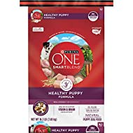 Purina ONE SmartBlend Natural Puppy Dog Food