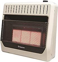 PROCOM HEATING MG3T1R 28,000 BTU Dual Fuel Vent-Free Infrared Wall Heater