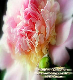 PEONY Fragrance Oil - 100% Premium Grade Uncut Oil - Gentle sweeps of peony are the first to bloom in this delightful bouquet. Pure elegance with strong, clean smell - BULK Frangrance Oil By Oakland Gardens (030 mL - 1.0 fl oz Bottle)