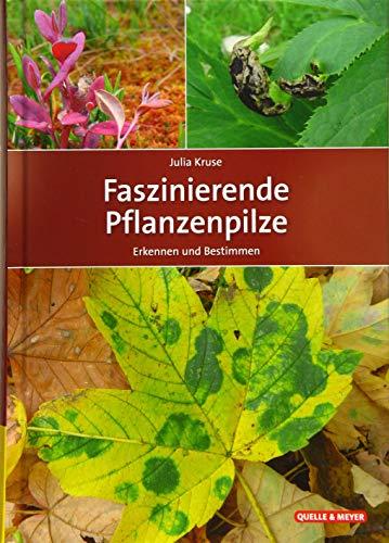 Faszinierende Pflanzenpilze: Erkennen und Bestimmen