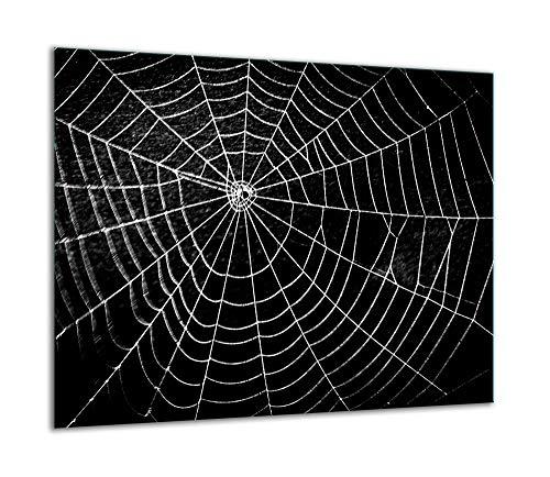 QTA | Herdabdeckplatte 60x52 Einteilig Glas Elektroherd Induktion Herdschutz Spritzschutz Glasplatte Schneidebrett Spinnwebe