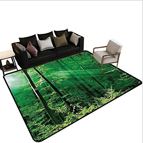 MsShe Vierkante tapijt Bos Groen, Horizontale Houten Planken Ruw Eiken Houten Structuur Oppervlaktestructuur Afbeelding, Groen Zwart
