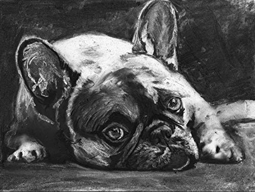 French Bulldog Wall Art Print, Black And White Frenchie Owner Gift, Frenchy Memorial Artwork, Charcoal Dog Drawing Print Choice Of Sizes, Hand Signed By Pet Portrait Artist Oscar Jetson