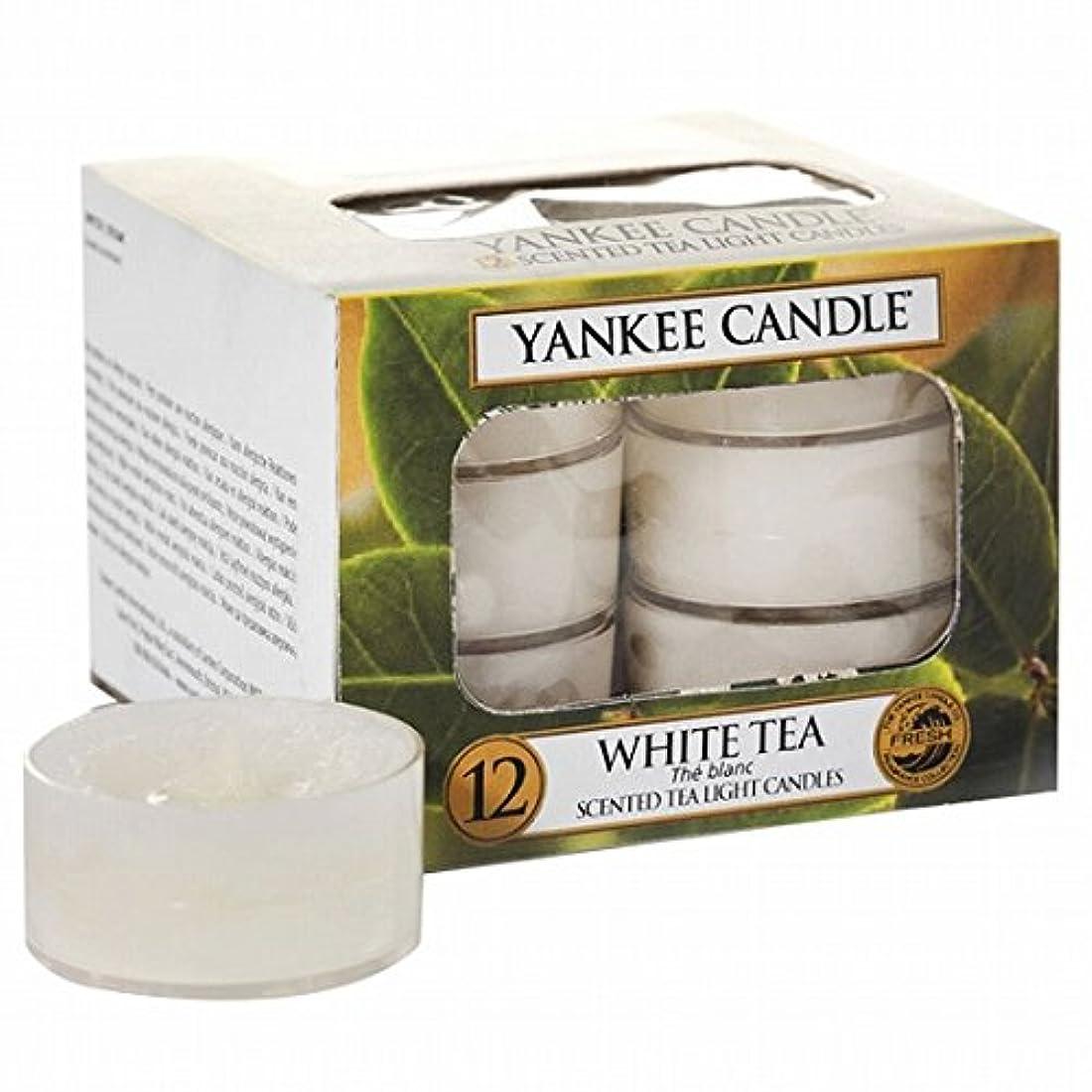 フェード火山注入ヤンキーキャンドル(YANKEE CANDLE) YANKEE CANDLE クリアカップティーライト12個入り 「ホワイトティー」