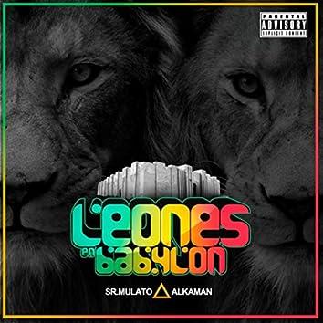 Leones en Babylon (feat. Sr Mulato)